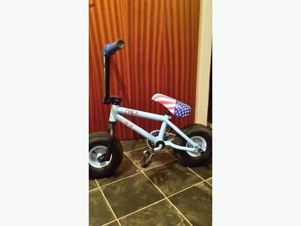 BMX USA Mini Rocker