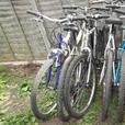 mountain bikes mens n ladys