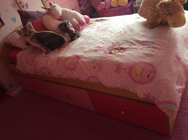Girls Cabin Single Bed.