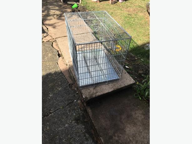 pet/dog cage
