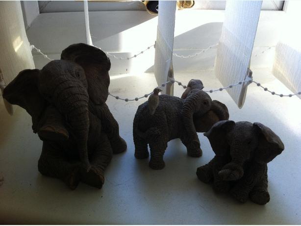 Tuskers  - Elephants x3