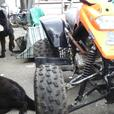 Ram or quadzilla  Quad bike project er 500 cc kawasaki engine