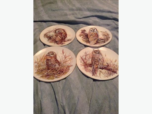 Bone china owl plates