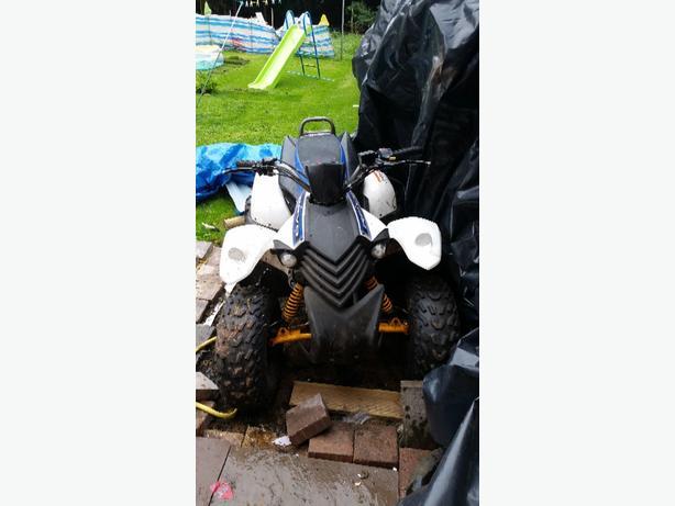 100 cc quad