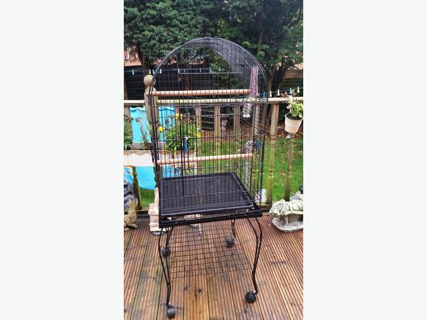 large parakeet cage