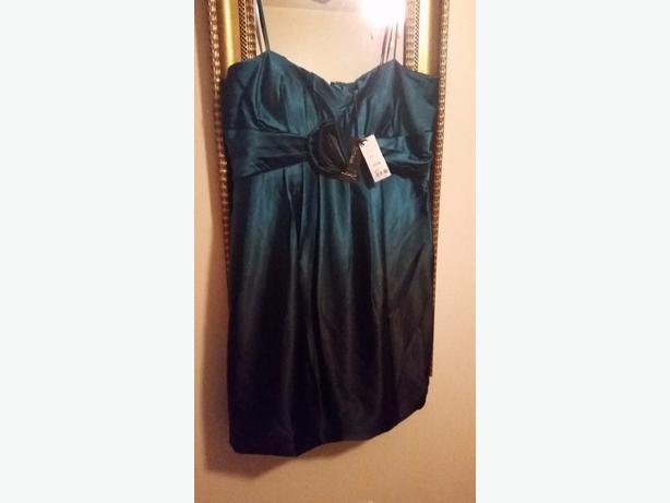 ladies occasion dress bnwt size 16