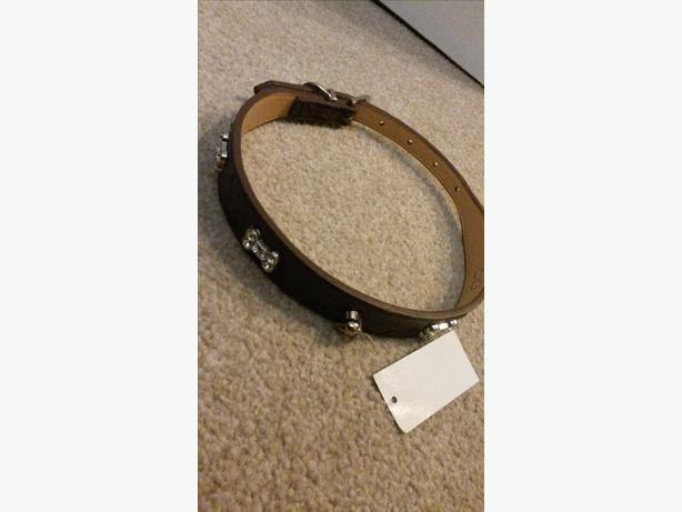 real leather dog collar for sale