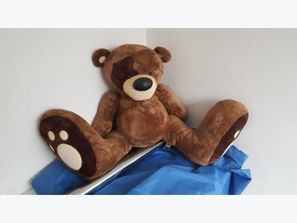 Teddy bigfoot