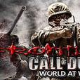 COD WAW RECOVERY / MODDING SERVICE *PS3 ONLY*