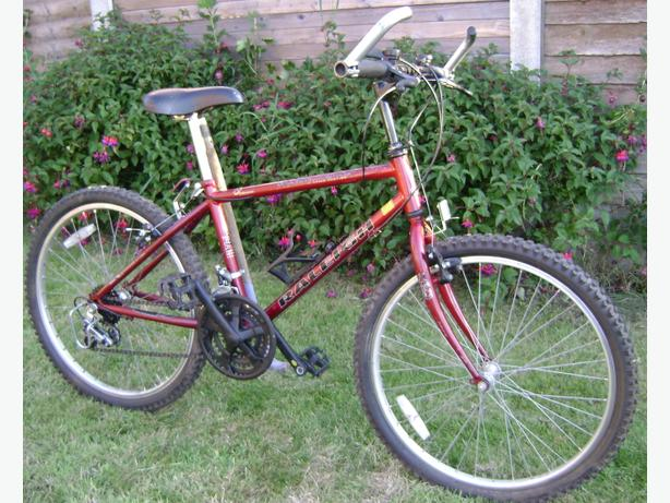 Raleigh Avalanche Bicycle / Bike