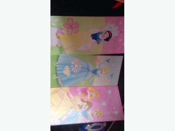 disney princess canvas'