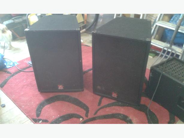 A Set of 2 Peavey Disco Speakers Eurosys 3