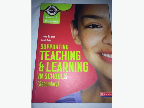 supporting teaching and learning in schools (secondary) level 3