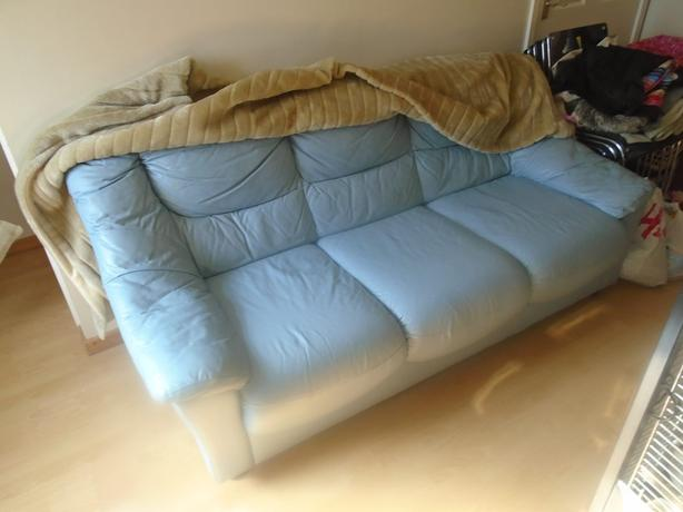 Leather settees