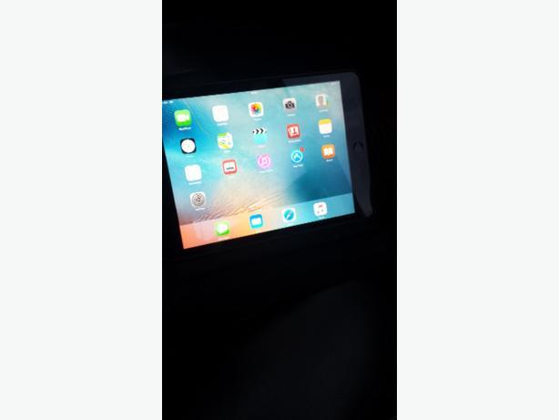 iPad 2 mini 16 gb WiFi and sim