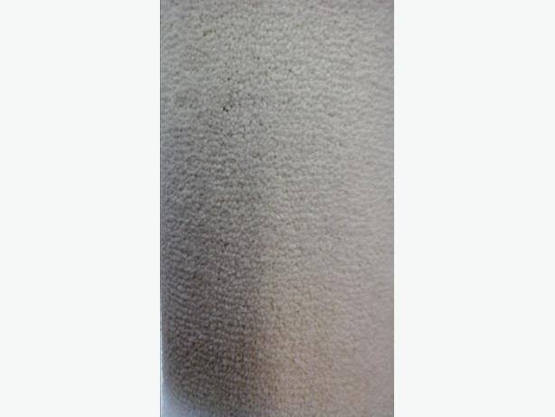 cream rubber back carpet