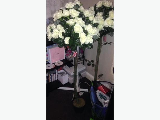 wedding rose trees
