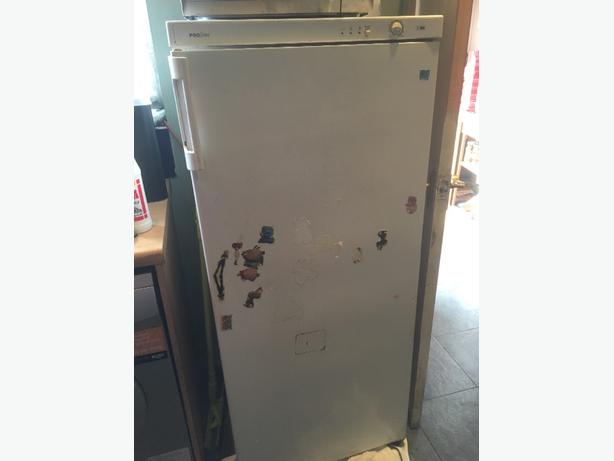 tall stand up freezer