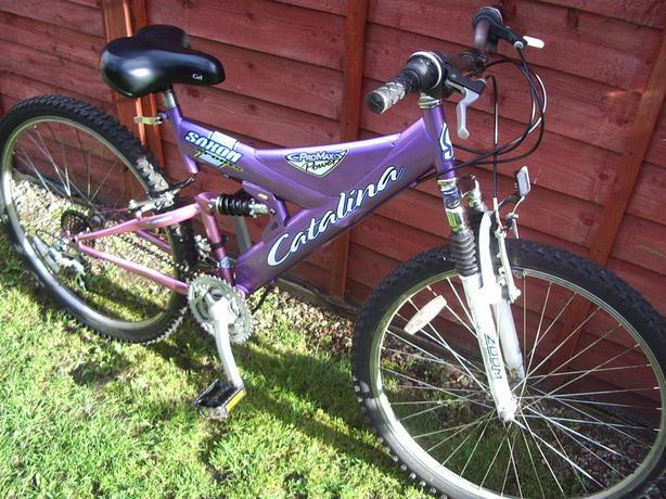 womans /  teenage mountain bike