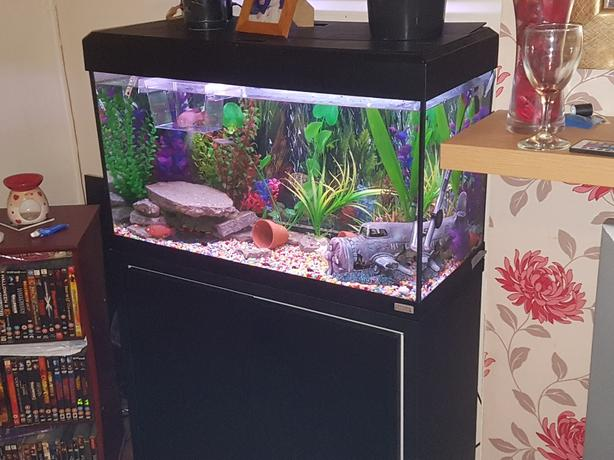 FOR TRADE: 3ft fish tank