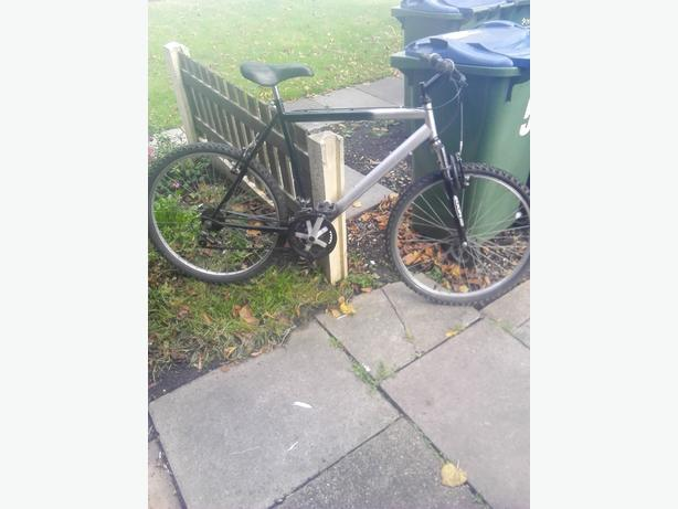 raligh pedal bike like new