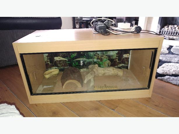 full set up vivarium for bearded dragon etc