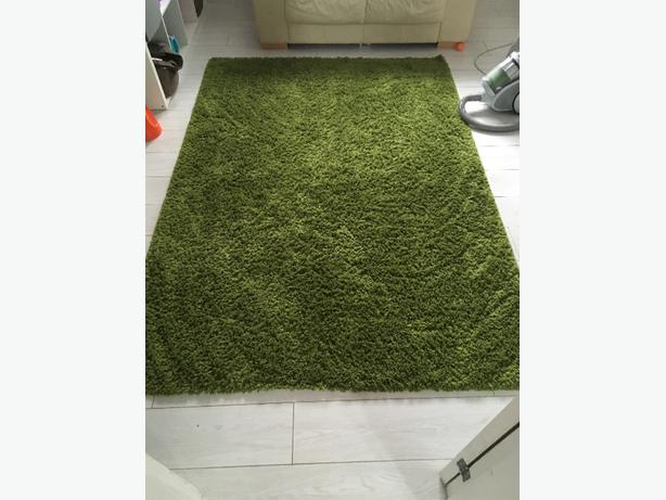 large green rug and 2 lightshades