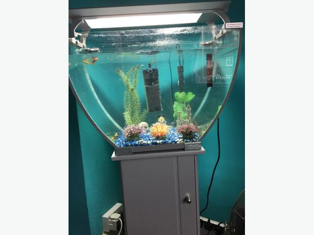 Fish tank rowley regis sandwell for Used fish tanks for sale many sizes