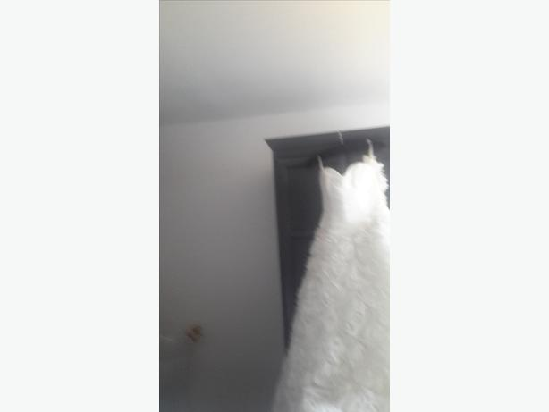 brand new wedding dresses
