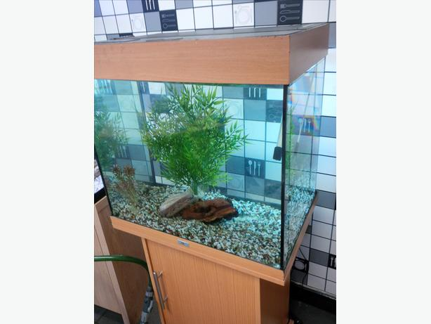 JUWEL LIDO 120 FISH TANK FULL SETUP WITH CABINET