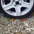 "Peugeot 17"" alloys"