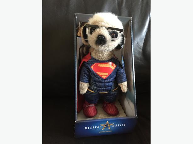Superman Sergei Meerkat