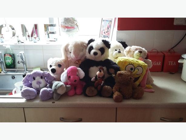 bundle of teddy's