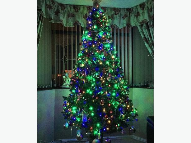 8ft xmas tree