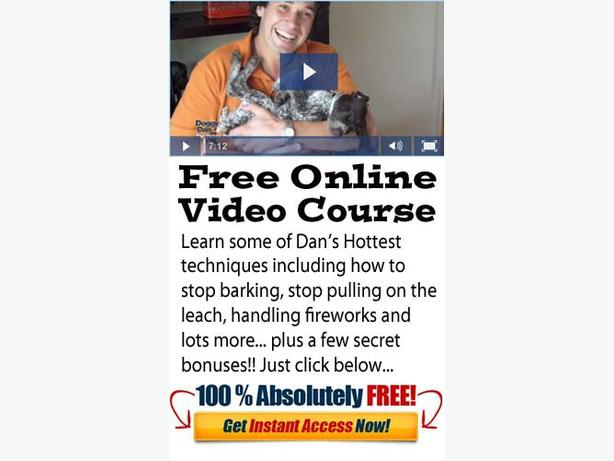 FREE Dog Training Video