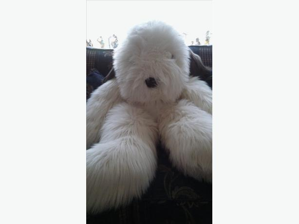 dulux dog cuddly toy
