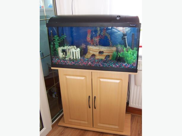Aquarium/Fishtank with Cabinet