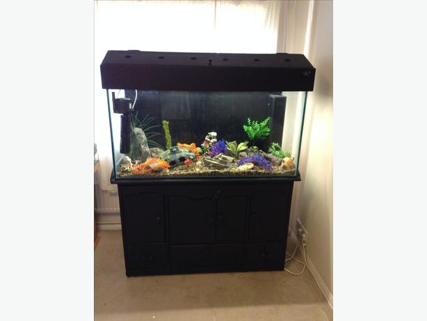 4 ft Fish Tank with Solid Wood Stand and Lid