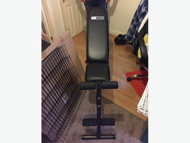 pro fitness dumbbell bench