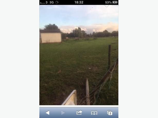 field to rent pelsall 140 a month