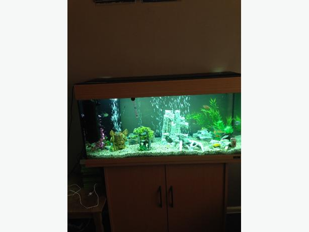 200l jewel fish tank and cabinet