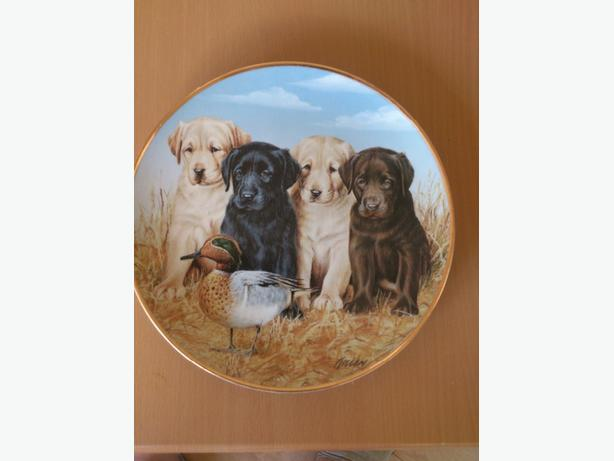 Danbury Mint Collector Plate