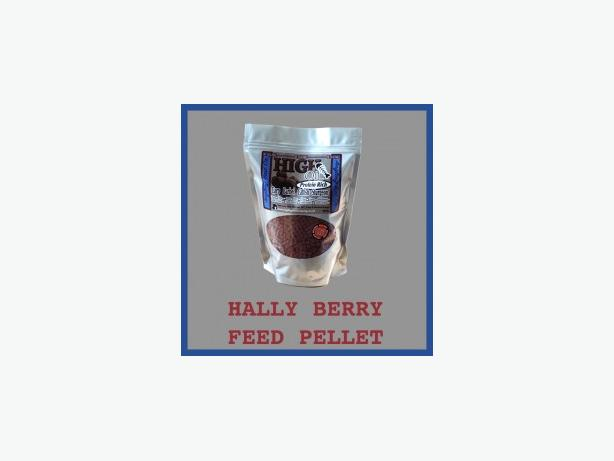 Hally Berry Feed Pellet