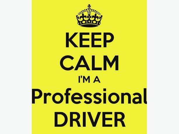 Professional Driver 4 Hire