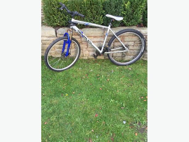marlin hybrid bike