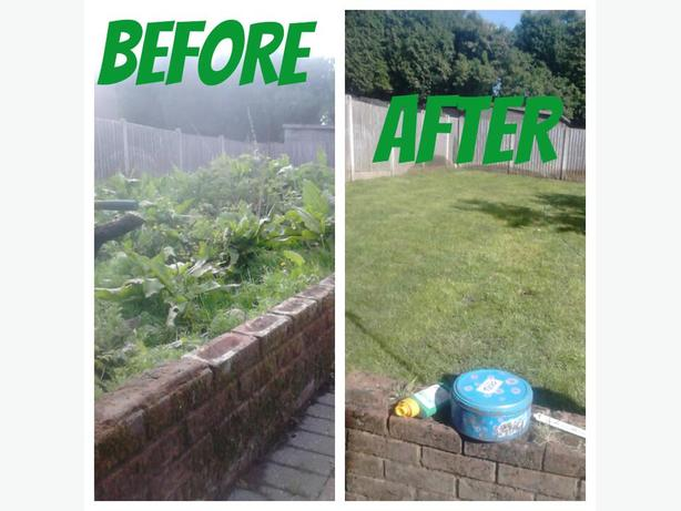 LANDSCAPE / GARDENER ** FREE QUOTES TODAY **