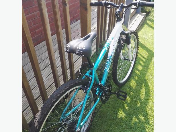 ladies quality mountain bike immaculate