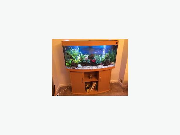 JUWEL VISION 260 4FT FISH TANK FULL SETUP WITH CABINET