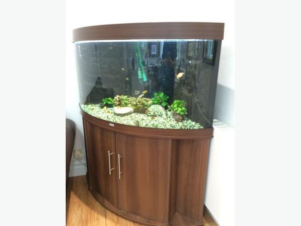 JUWEL TRIGON 190 IN MAHOGANY FISH TANK FULL SETUP WITH CABINET