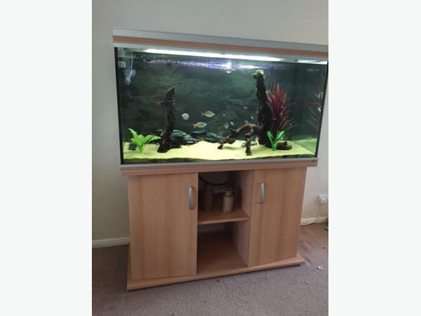 RENA AQUALIFE 450L 4FT FISH TANK FULL SETUP WITH CABINET AND EXTERNAL FILTER